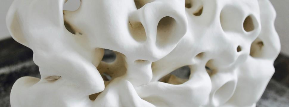 Corail intersidéral